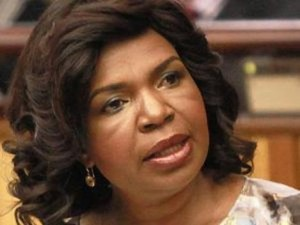 The DA has not been able to trace the docket with the details of the SAPS investigation into the activities of Dina Pule. – image - www.iol.co.za