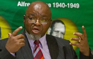 ANC Secretary General Believes Malema and Madonsela May be Working Together. Image: TimesLive