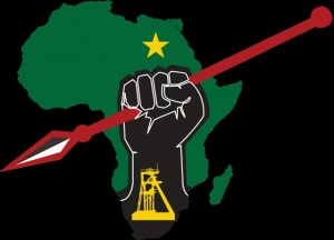 The Economic Freedom Fighters proceeded with a motorcade from Johannesburg to Soweto despite police orders against the gathering. – image - www.politicsweb.co.za