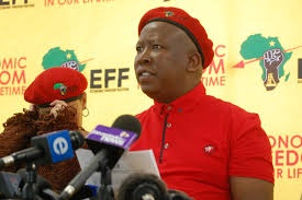 EFF Leader, Julius Malema. Called on Vavi and Jim to work with his party.  Image: www.incwajana.com
