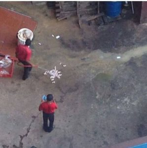 One of the photos showing staff at the Braamfontein branch of KFC hosing chickens on what looks like a dirty floor.  Image: TimesLive