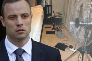 Oscar Pistorius. Photo : www.mirror.co.uk